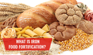 what is iron food fortification